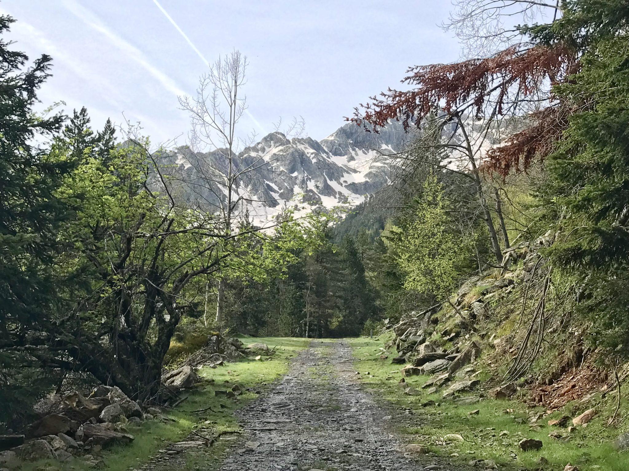 Alt Pirineu hiking scaled - Alt Pirineu-Cataluña-España