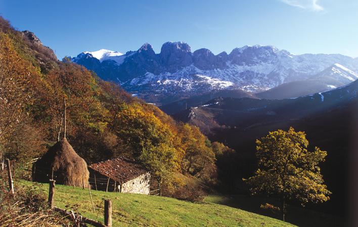 BiosferaPenaUbina - Parque Natural de Las Ubiñas-La Mesa-Asturias-España
