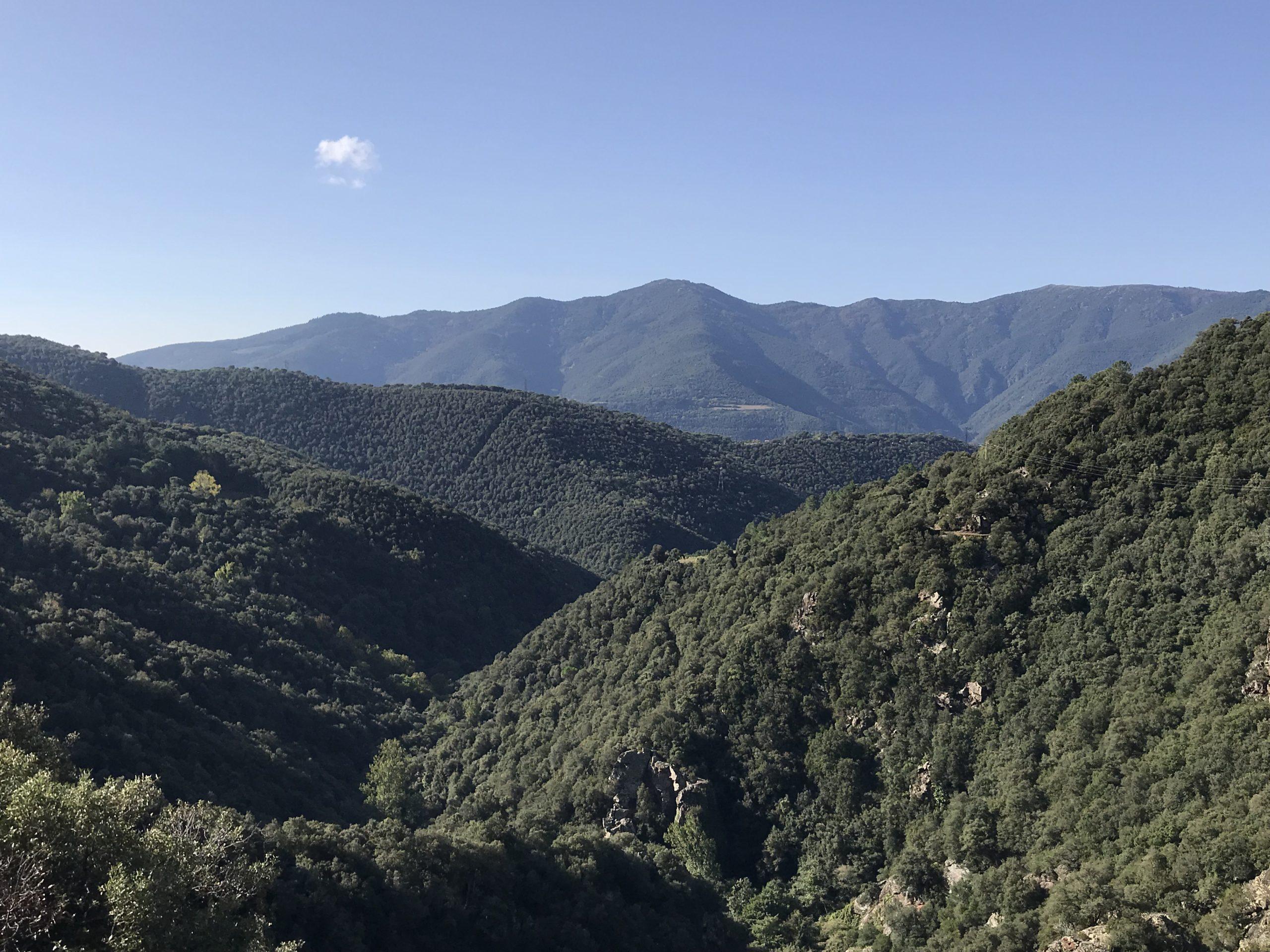 Montseny 2 scaled - El Montseny-Cataluña-España