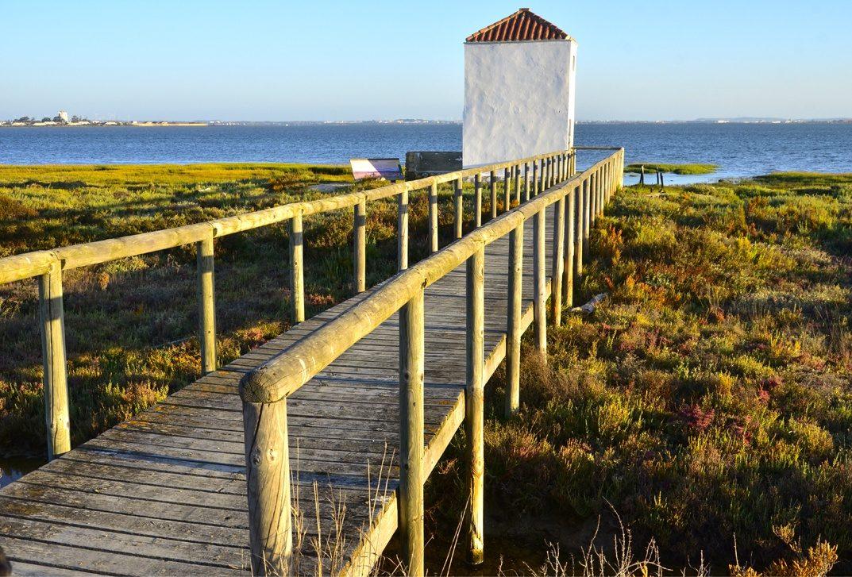 Pasarela Parque Natural Bahia de Cadiz e1587897922923 - Bahía de Cádiz-Andalucía-España