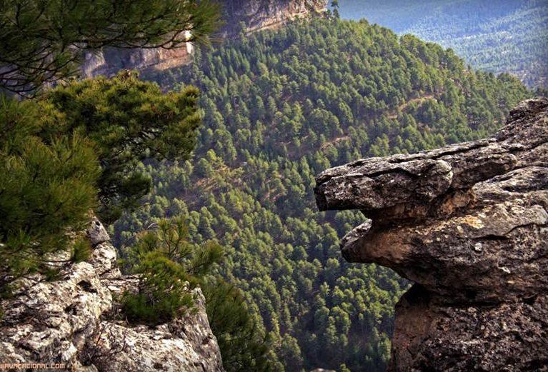 Serranía de Cuenca e1588183402796 - Serranía de Cuenca-Castilla La Mancha-Spain