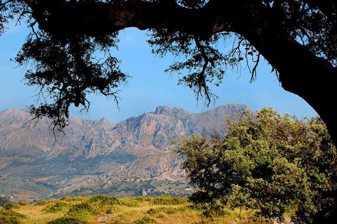 Sierras Subbéticas e1587920709869 - Sierras Subbéticas-Andalucía-España