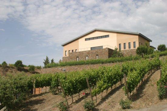 buil gine 1 - Where to rest-Serra de Montsant