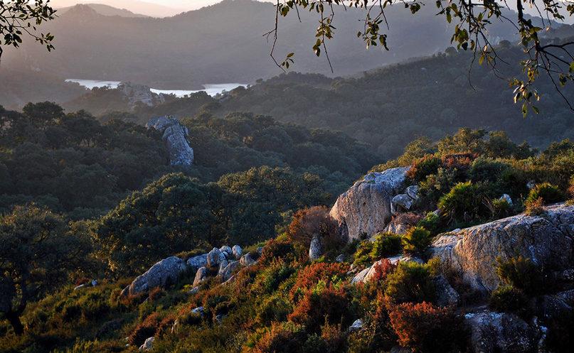 garganta del muerto e1587909921354 - Parque Natural Los Alcornocales-Andalucía-España