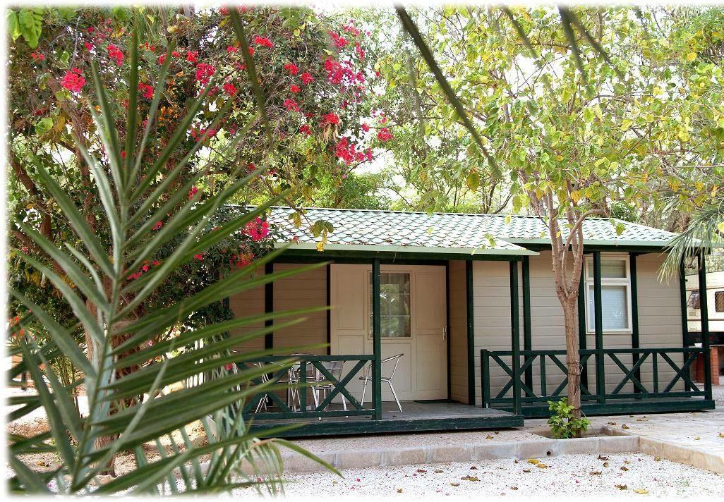 laspalmerascamping e1588099989229 - Where to rest-Las Salinas de Santa Pola