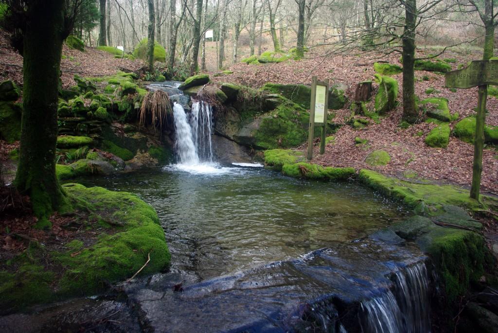 monte aloia - Monte Aloia Natural Park-Galicia-Spain