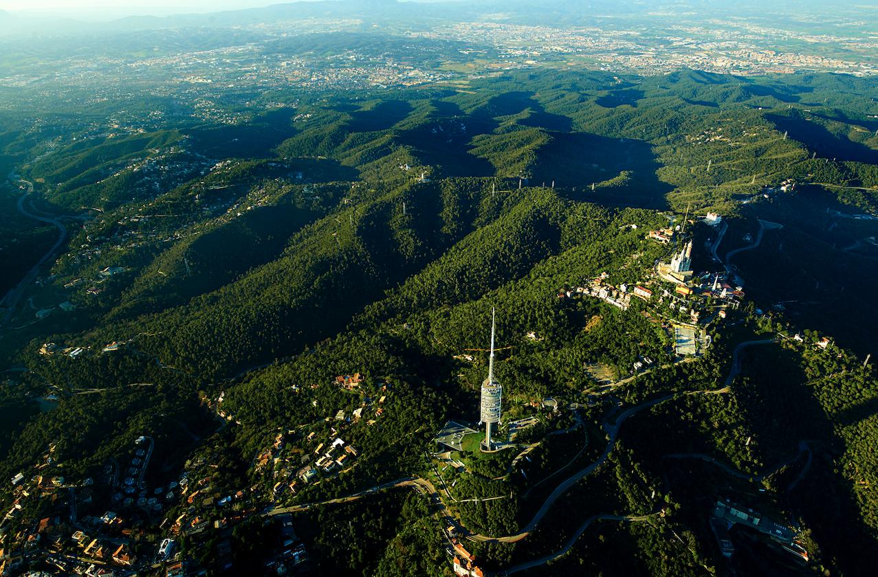 parc natural collserola - Collserola-Catalonia-Spain