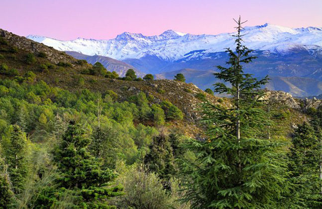 parque natural sierra de huetor e1587925044157 - Sierra de Huétor-Andalusia-Spain