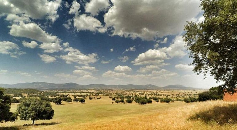 parquenacionalcabañeros e1588170451518 - Cabañeros-Castilla La Mancha-Spain