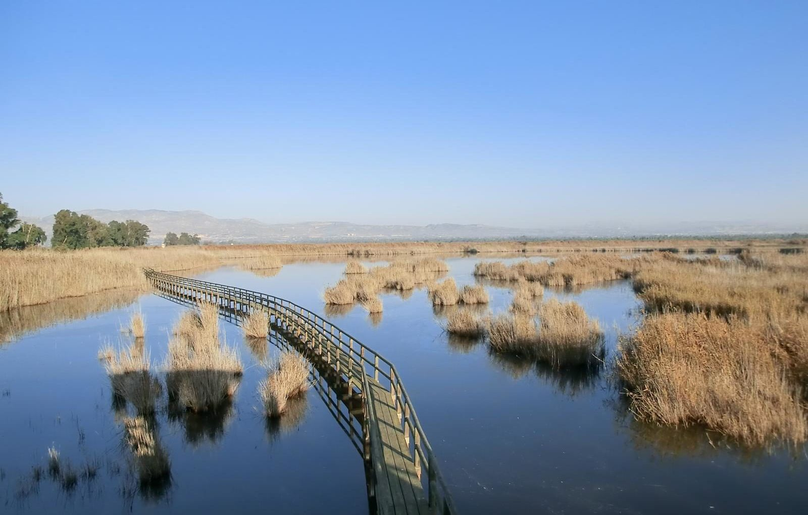parquenaturalelhondo 1 e1588261461928 - Parque Natural El Hondo-Comunidad Valenciana-España