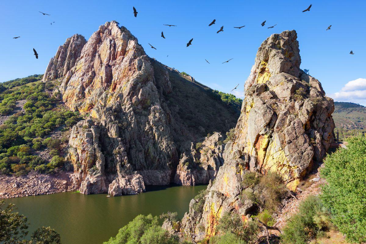 parquenaturalmonfrague - Parque Nacional de Monfragüe-Extremadura-España
