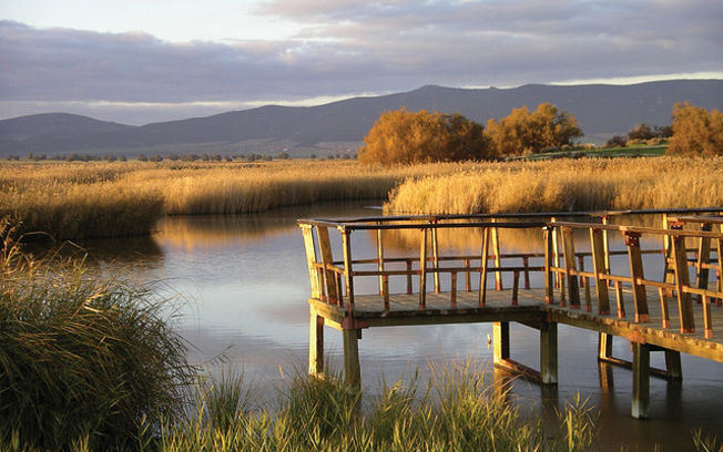 parquenaturaltablasdaimiel - Tablas de Daimiel-Castilla La Mancha-Spain