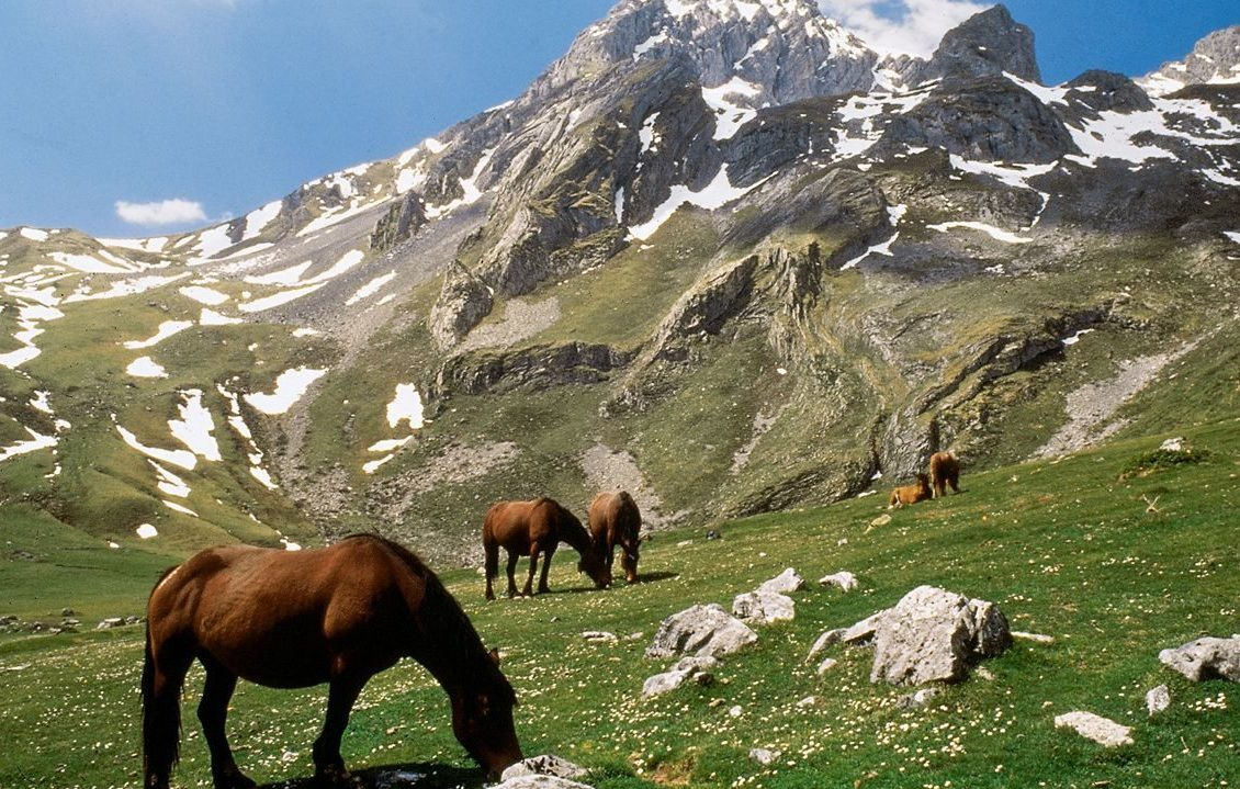 senderismo ubiñas e1587484100208 - Parque Natural de Las Ubiñas-La Mesa-Asturias-España