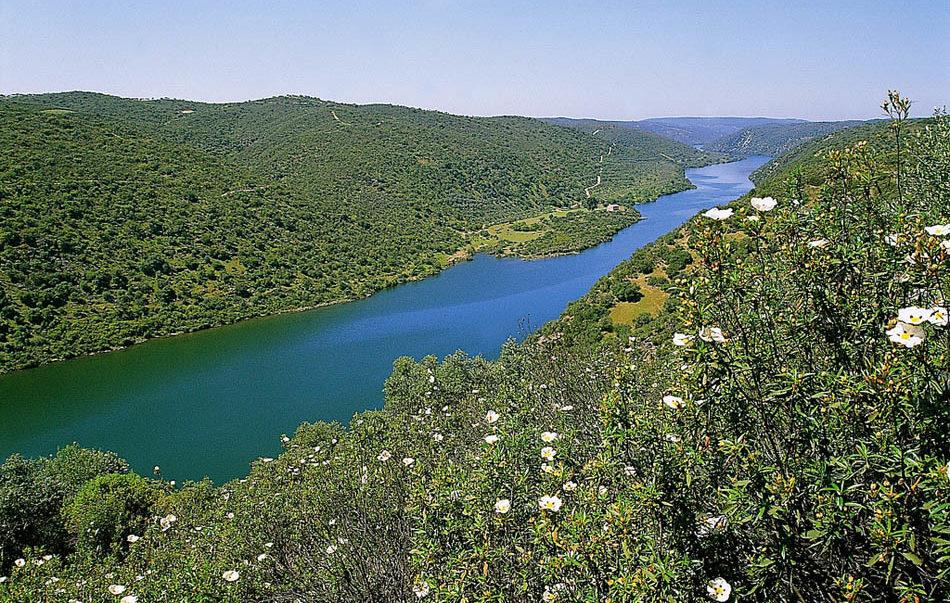 Parque Natural do Tejo Internacional e1590252114693 - International Tagus-Castelo Branco-Portugal