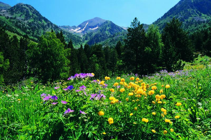 Parque natural Sorteny - Sorteny Valley-Ordino-Andorra