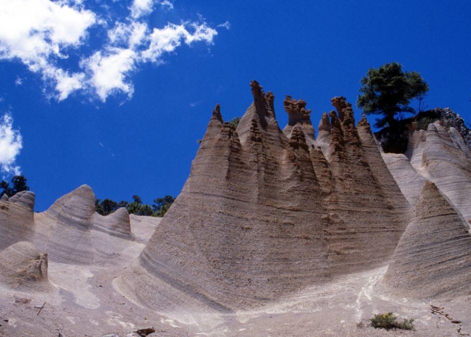 coronaparknatural e1588965708275 - Corona Forestal Natural Park-Canary Islands-Spain