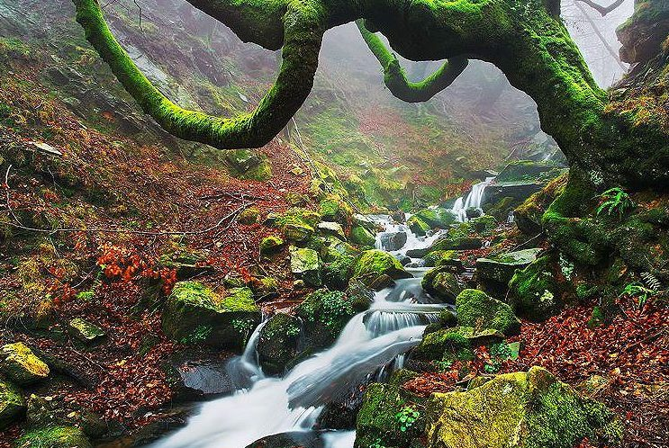 gorbeia e1588327853670 - Parque Natural de Gorbeia-Basque country-Spain