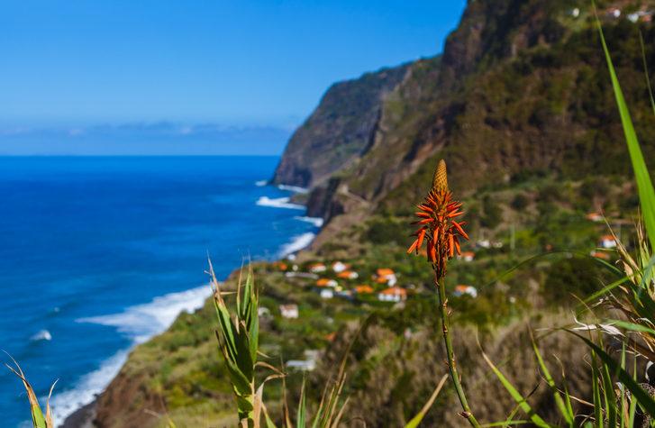 madeiraparquenatural2 e1590333785841 - Madeira-Madeira Island-Portugal