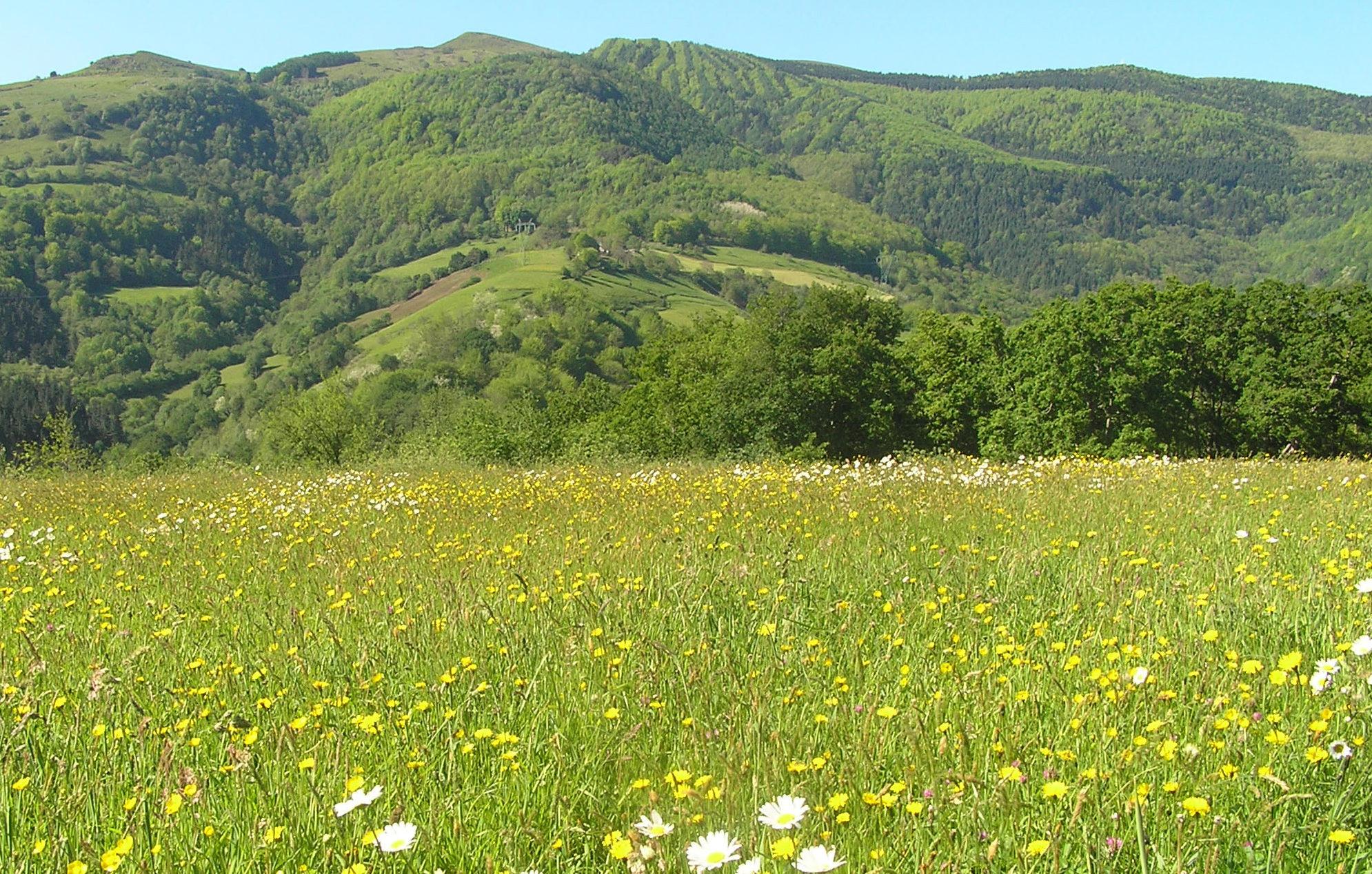 pagoteaparquenatural e1588504109924 - Parque natural de Pagoeta-País Vasco-España