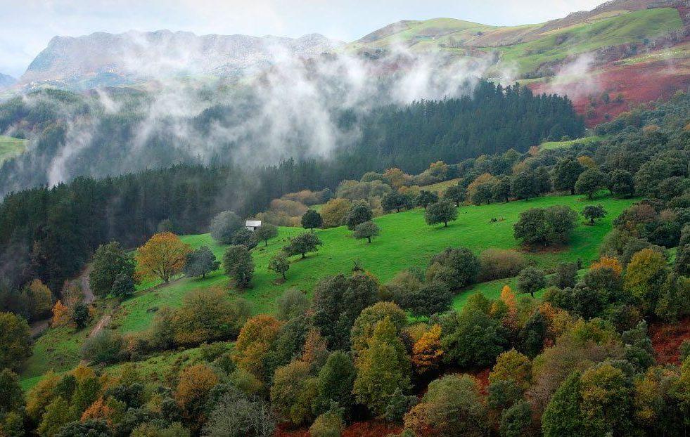 parque natural de armañon 1 e1588501949357 - Parque natural de Armañón-País Vasco-España