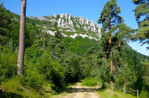 parque natural de valderejo 1 e1588506647677 - Parque natural de Valderejo-País Vasco-España