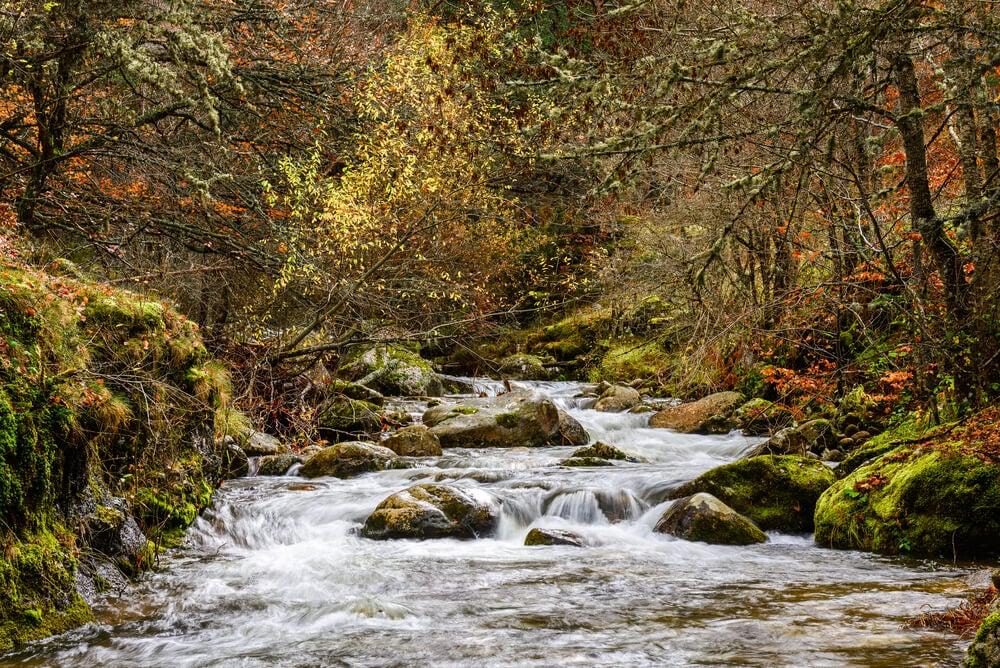 parque natural sierra cebollera - Where to rest-Sierra de Cebollera