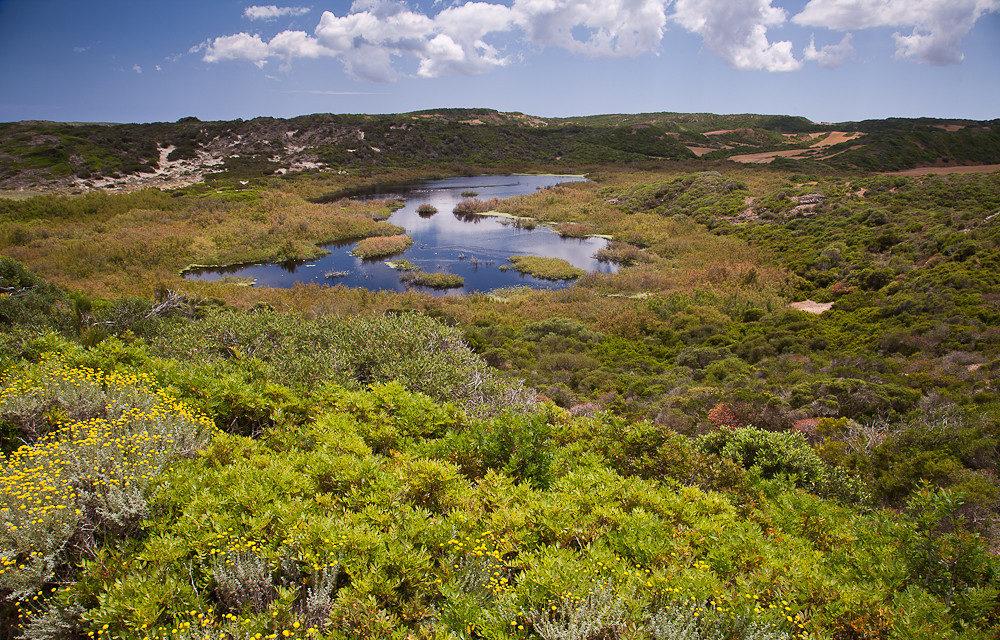 parquenaturalalbuferadesgrau e1588693929498 - Albufera des Grau Natural Park-Balearic Islands-Spain