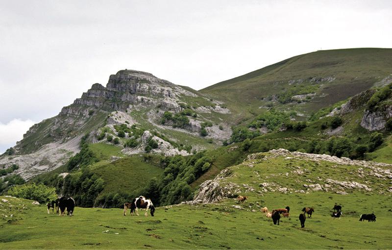 parquenaturalarmañon - Parque natural de Armañón-País Vasco-España