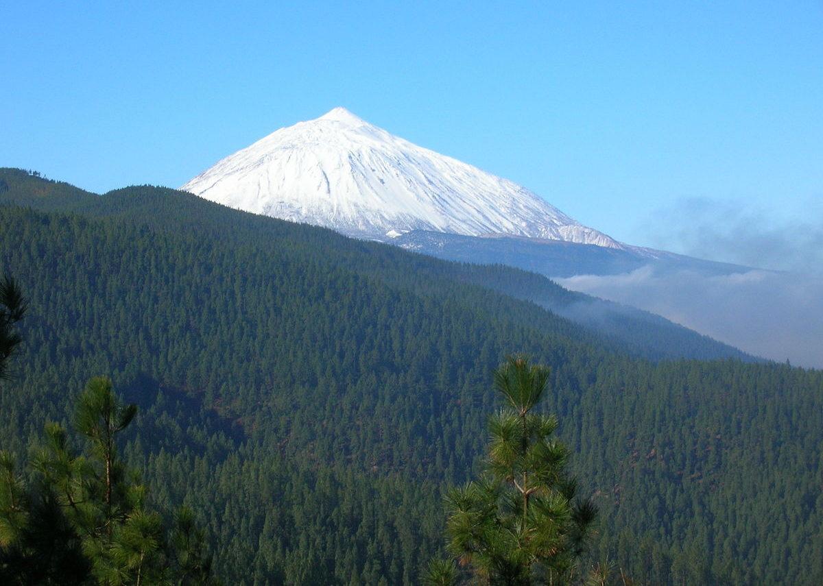 parquenaturalcorona e1588965750937 - Corona Forestal Natural Park-Canary Islands-Spain