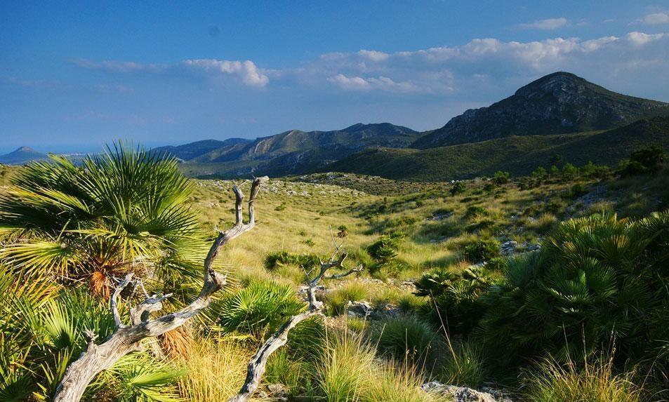 parquenaturalpeninsulallevant e1588702026446 - Península de Llevant-Islas Baleares-España
