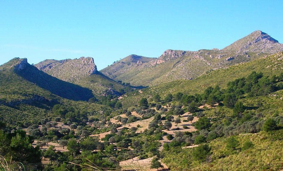 peninsulallevantparquenatural e1588702153365 - Península de Llevant-Islas Baleares-España
