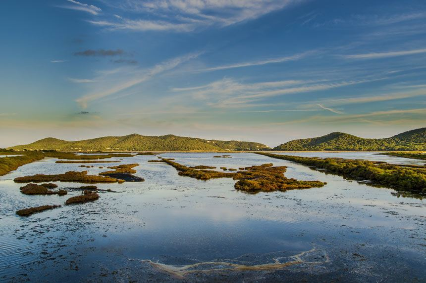 ses salines natural park in Ibiza II - Ses Salines d'Eivissa i Formentera-Islas Baleares-España