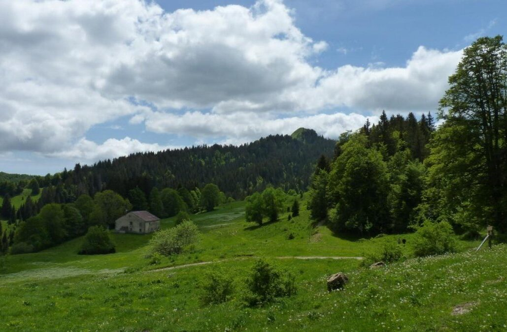 altojurapark e1601673804305 - Parc Naturel Régional du Haut-Jura-Jura, Ain, Doubs-France