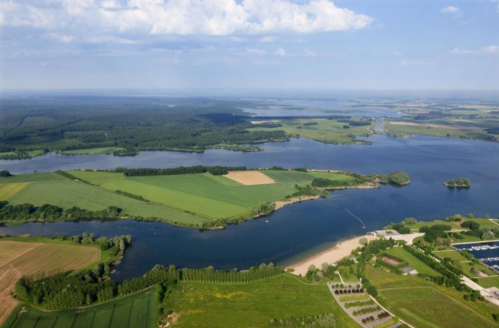 bosquedeoriente e1602587470795 - Parc naturel régional de la forêt de l'Orient-Aube-France
