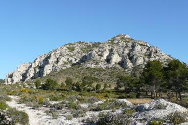 parquenaturalalpilles 368x245 - Parc Naturel Régional des Alpilles-Bouches-du-Rhône-France