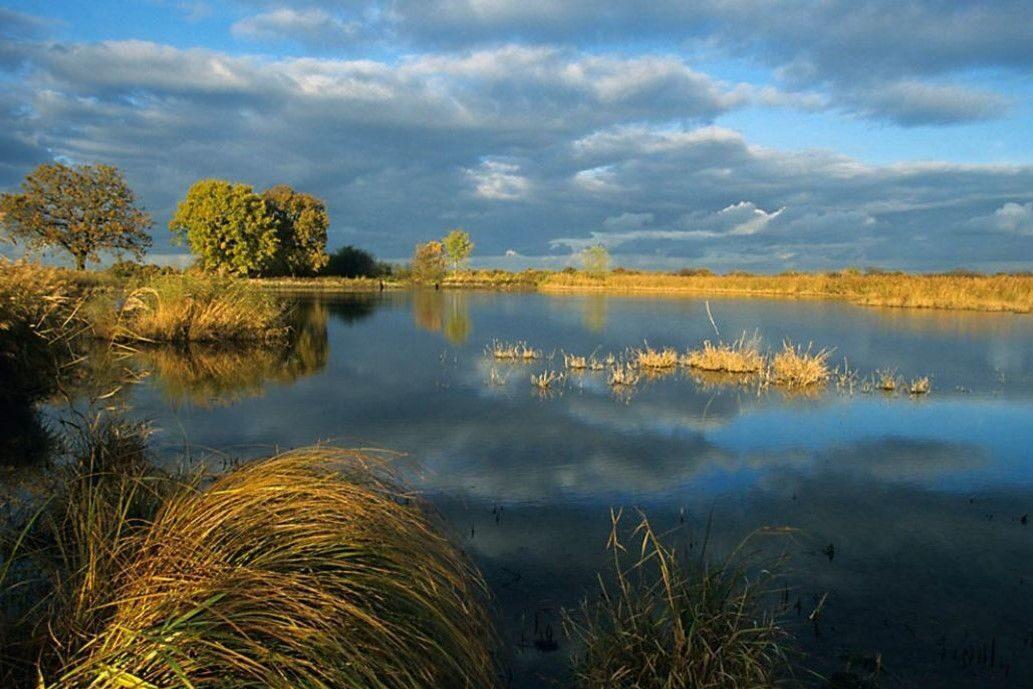 parquenaturalbrenne e1602605509448 - Parc Naturel Régional de la Brenne-Indre-France