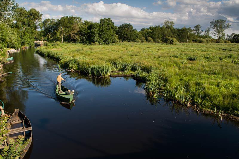 Parc naturel regional de Briere - Parc Naturel Régional de Brière-Loire-Atlantique-France
