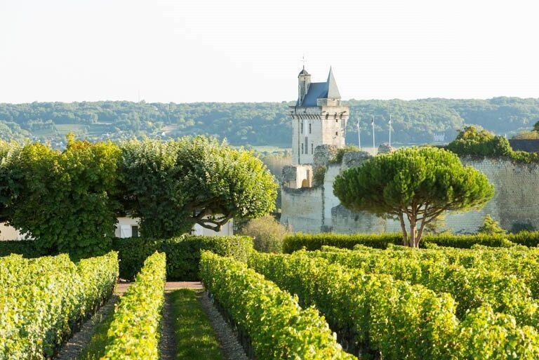Loire Anjou e1614017537987 - Parc Naturel Régional Loire-Anjou-Touraine-France