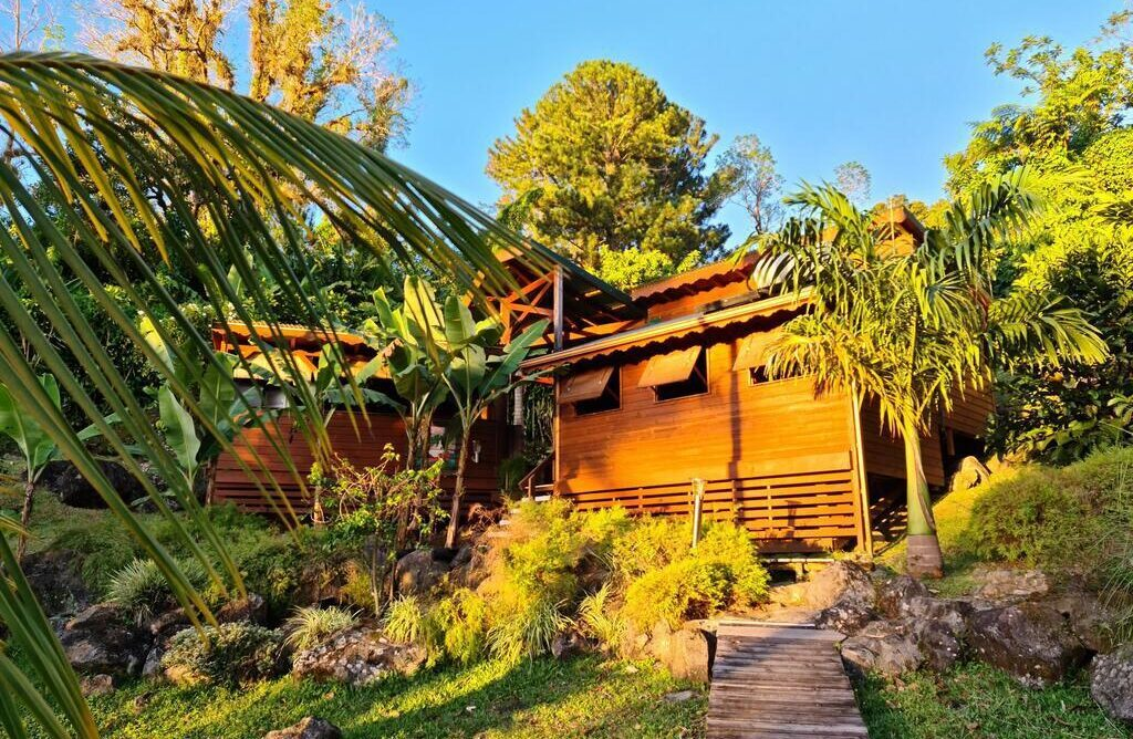 les bananes vertes e1613757059602 - Where to rest-Guadeloupe